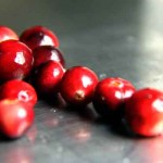 Insel-Delikatesse: Siepeltjespot mit Cranberries