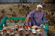 Buchtipp: Auf 80 Tellern um die Welt