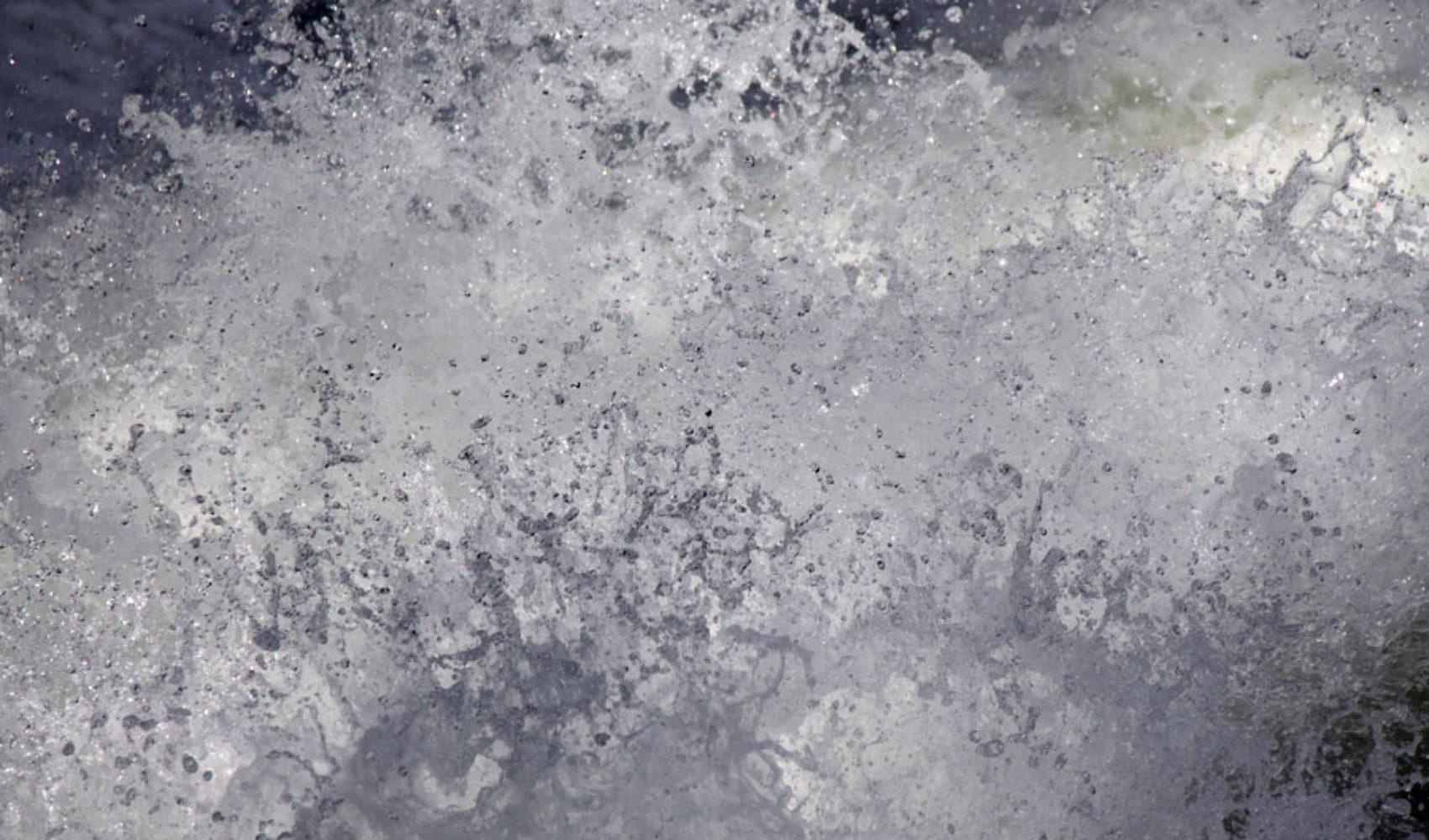 """Der """"Schwimmer"""": Kanadas wilder Lachs"""