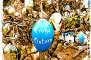 Eier für Ostern!