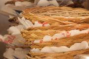 Toko oder Restaurant: Indonesisch essen in den Niederlanden