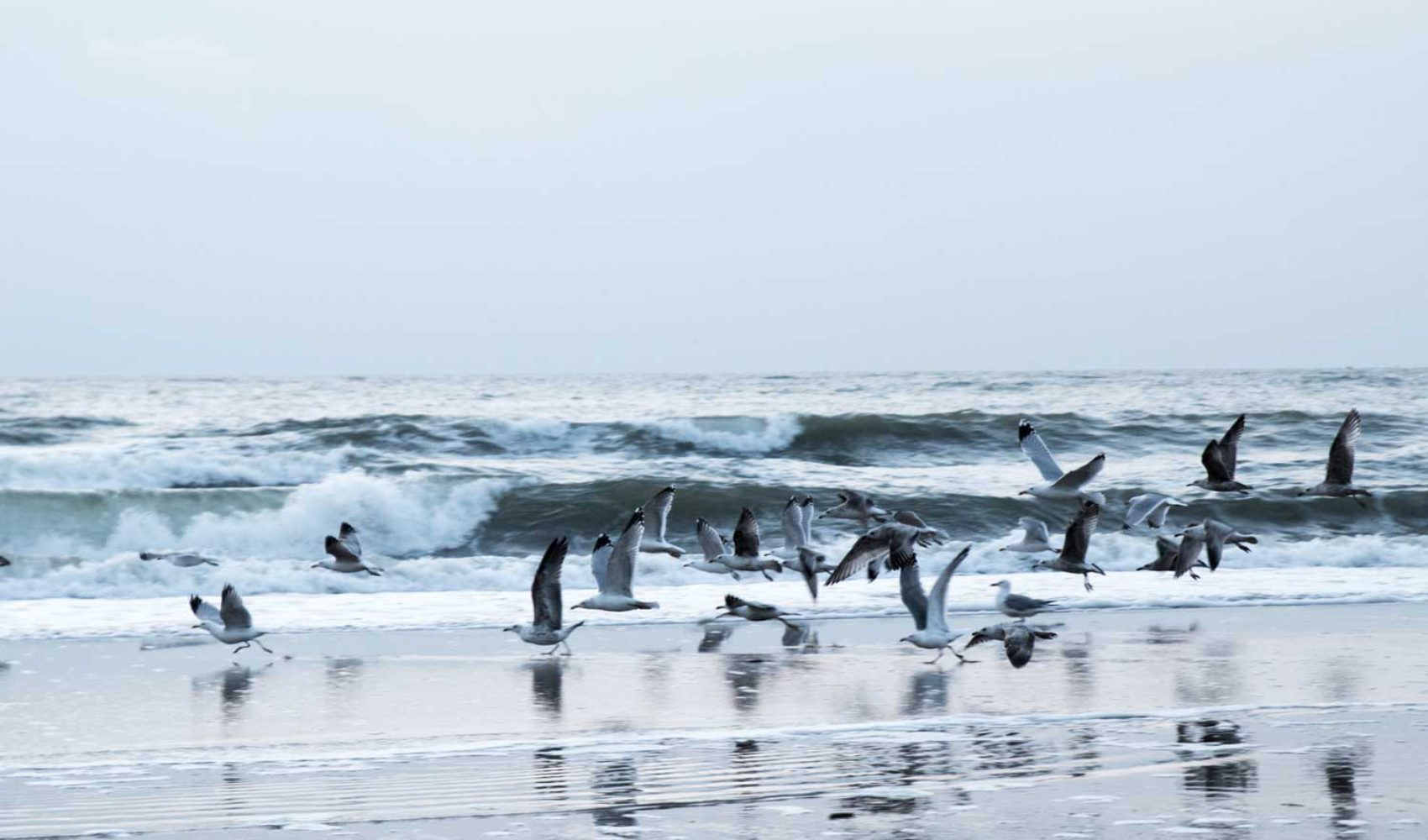 Fototagebuch 1: Nordsee  - nach dem Sturm