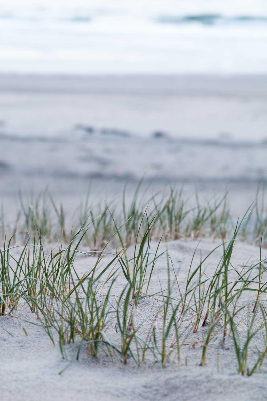 Kurzurlaub in Holland - Nordsee Wassenaar
