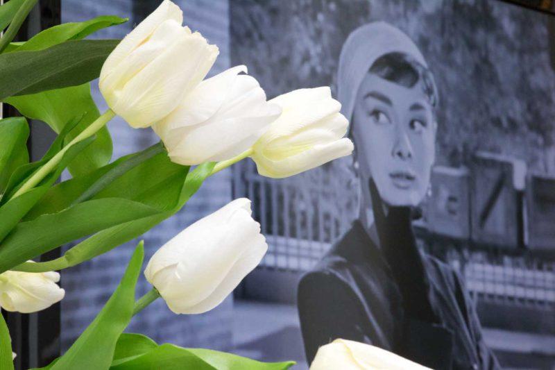 """Audrey Hepburn in Den Haag: """"To Audrey with Love"""" - eine besondere Austellung"""