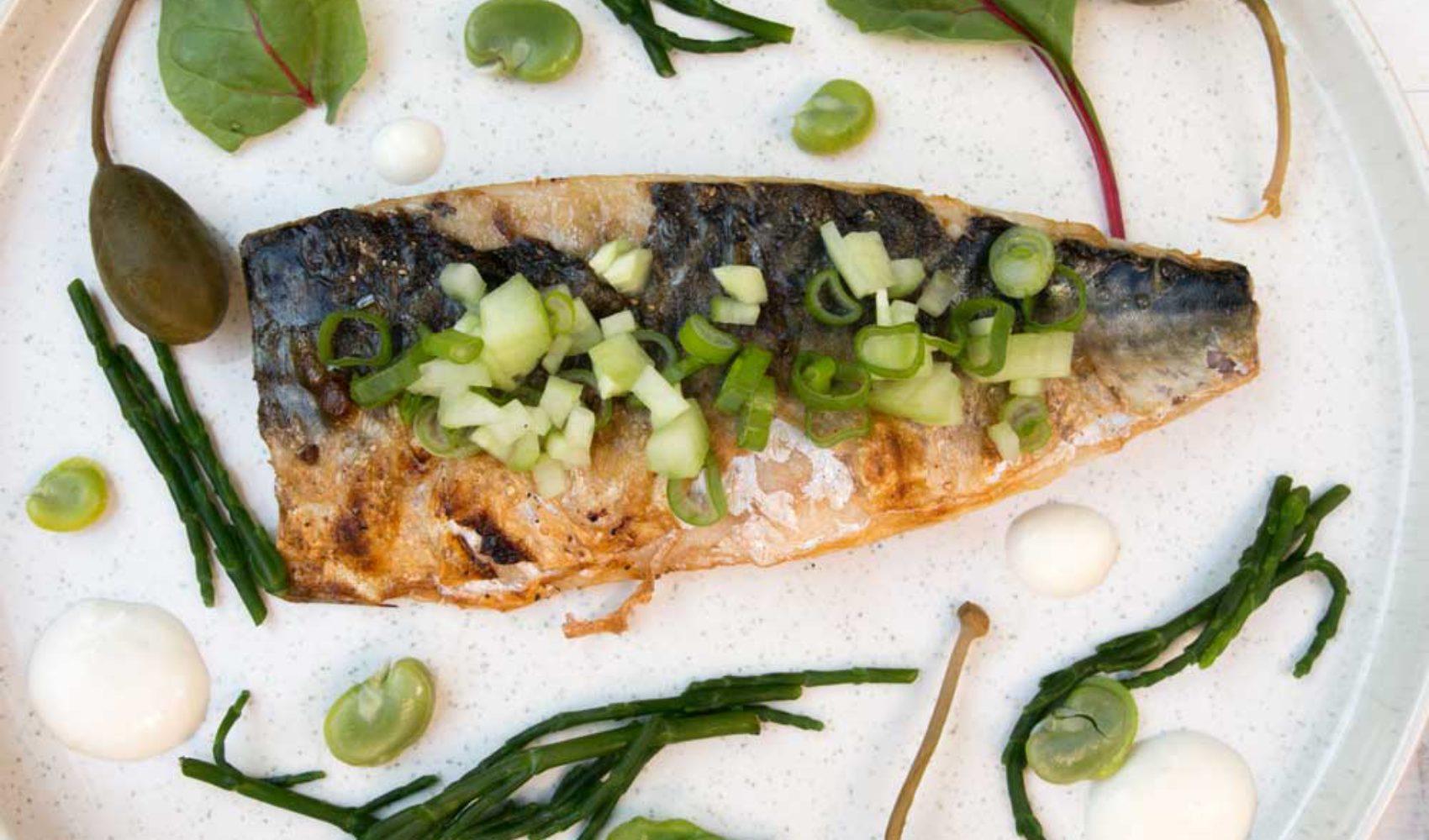 Gegrilltes Makrelenfilet mit Queller, Kapernäpfeln und Meerrettich-Sauce