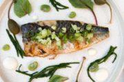Makrelenfilet vom Grill ZUbereitung