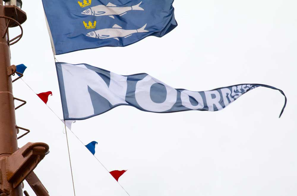 Noordster Vlaggetjesdag