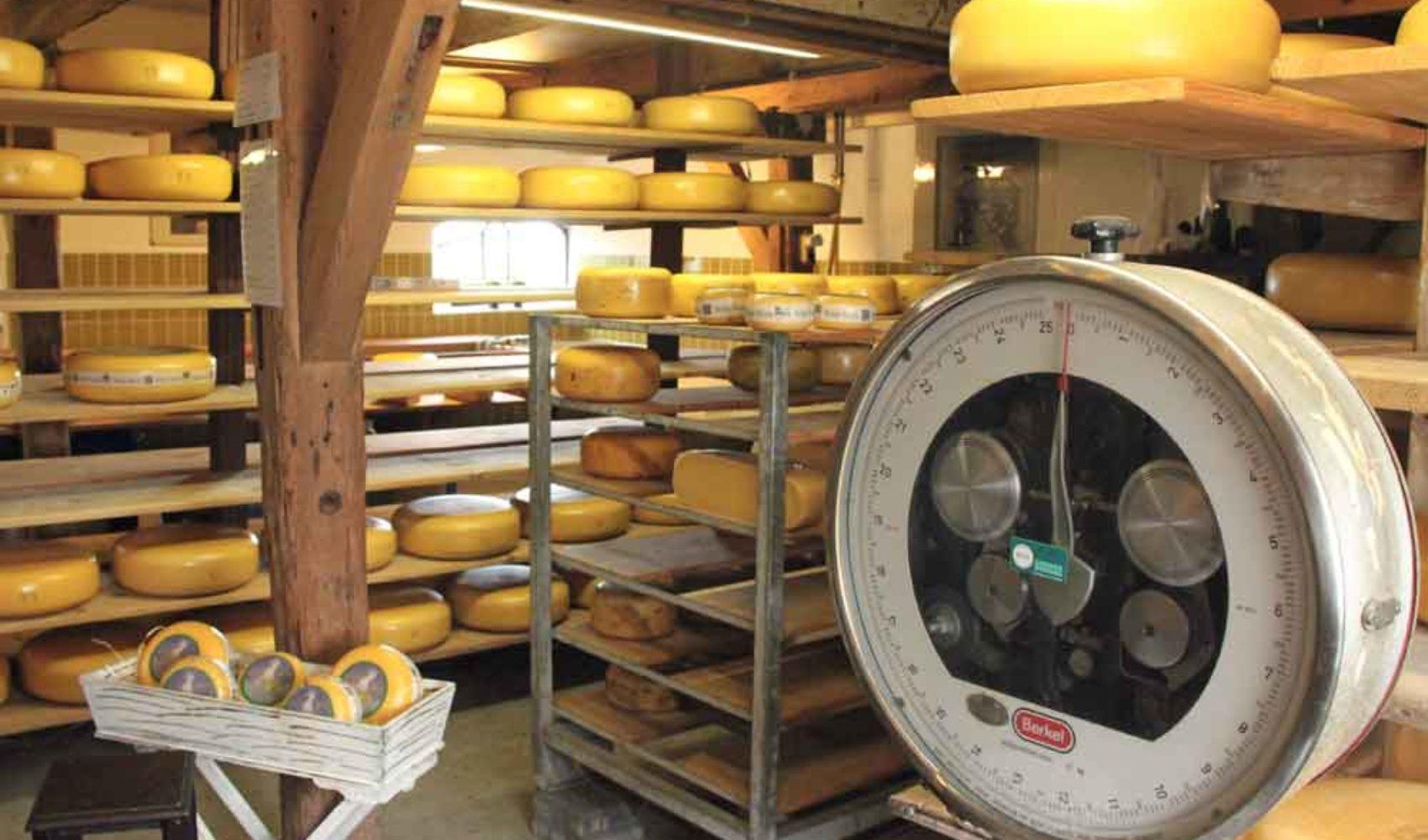 Käse aus Holland - So erkennst du echten Boerenkaas